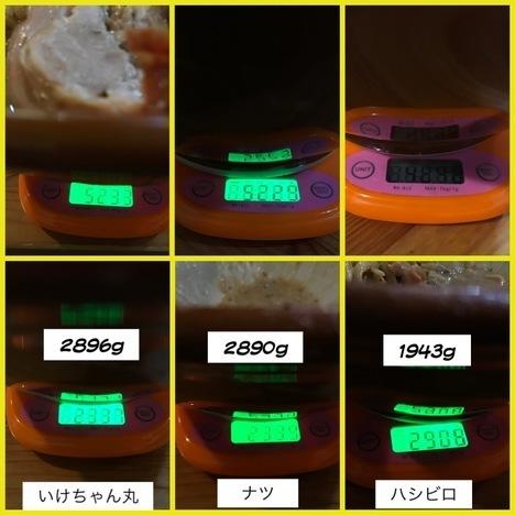 男気ラーメンアカギ汁なしとラーメン麺マシ800g計量