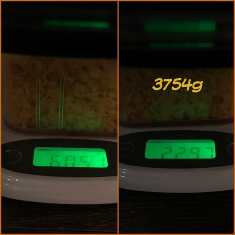 IMG 2165 thumbnail2 - 亀甲屋(島根県益田市)【大食い】チャレンジ8連戦3件目大繁盛店の絶品デカ盛うどん