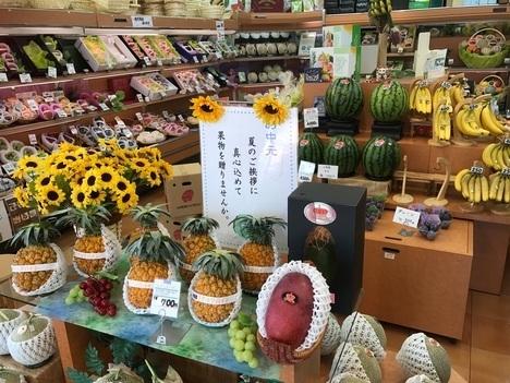 アオイ農園ぶどうの木店頭フルーツ