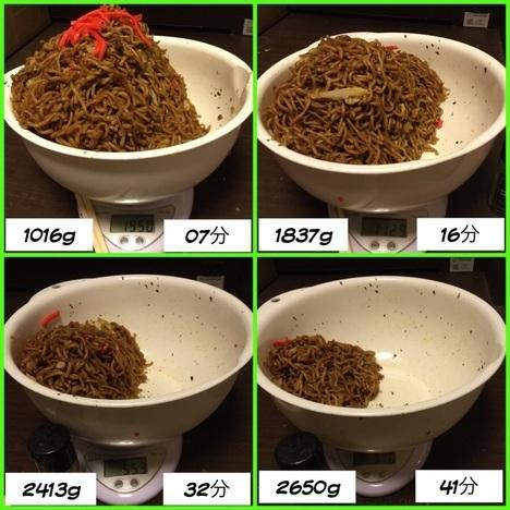 image acb2a thumbnail2 - さくら(栃木県足利市)【デカ盛り】テイクアウト専門店の大盛り焼きそばを4つでセルフ爆盛り【大食い】