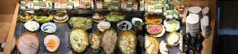 しゃぶ葉ディナーバイキング野菜類サラダバーラインナップ