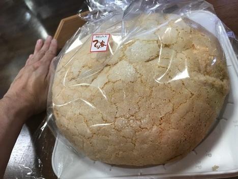 18切符大食い旅多賀SA上りメガ盛りメロンパン掌比較