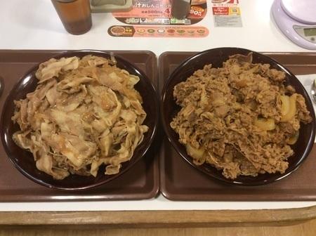 すき家キング牛丼キング豚丼ダブル大食い上アングル