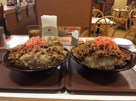 すき家キング牛丼キング豚丼ダブル大食い断面