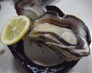 みやこや岩牡蠣